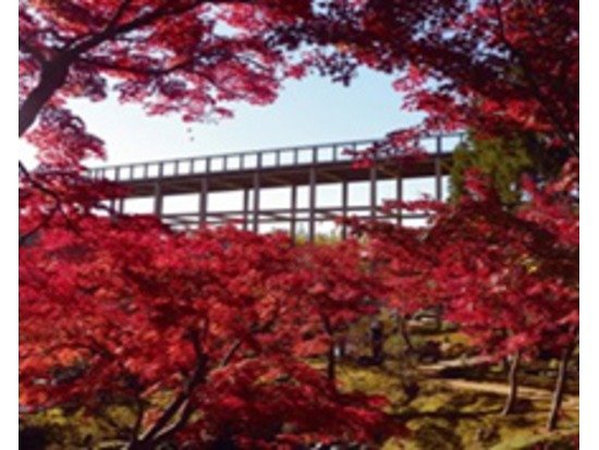 けいはんな記念公園(京都府立関西文化学術研究都市記念公園)